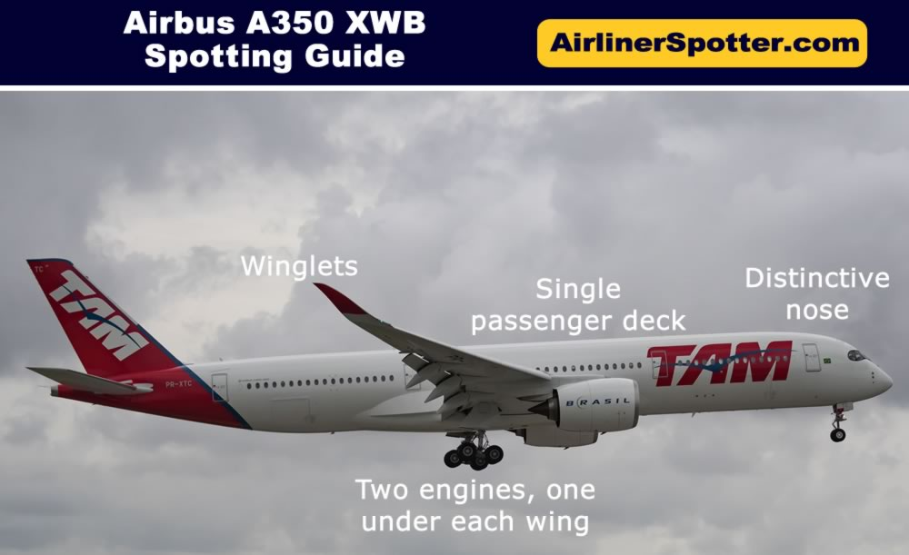 Airbus A350-900 spotting highlights, including a twin-engine configuration, a single passenger deck, a distinctive nose and winglets.